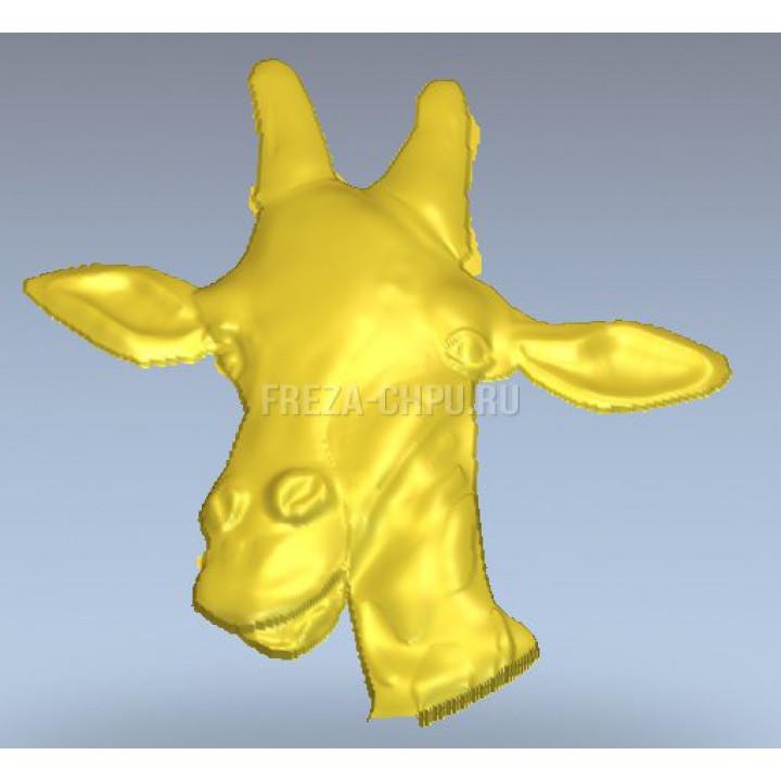 Giraffe_007 Жираф голова
