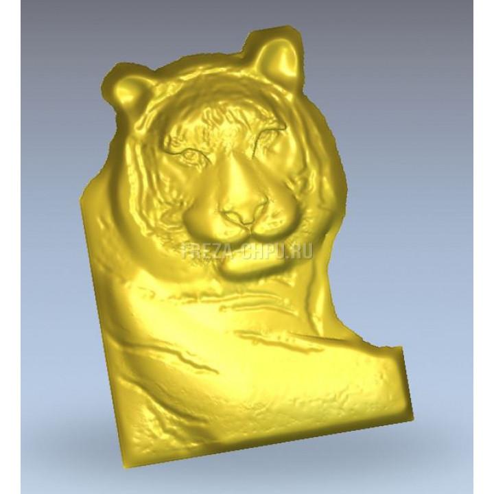 Tiger_009 Тигр