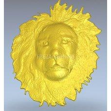Лев голова морда Lion_head_face_025
