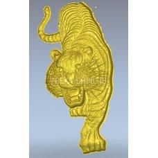 Тигр Tiger_036